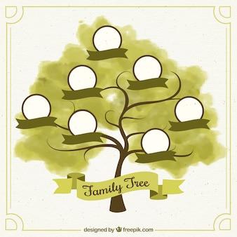 Árvore genealógica da aguarela com fitas verdes