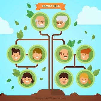 Árvore genealógica minimalista com folhas verdes