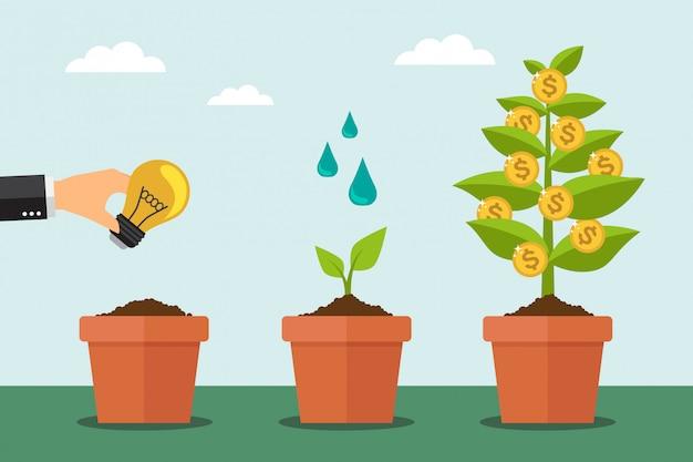 Árvore monetária e processo de crescimento financeiro