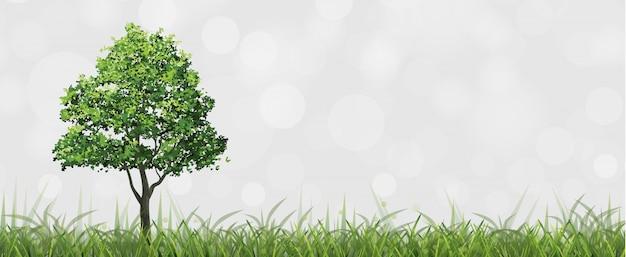Árvore no campo verde com fundo do bokeh.