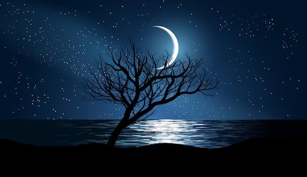Árvore solitária na praia com céu estrelado e lua
