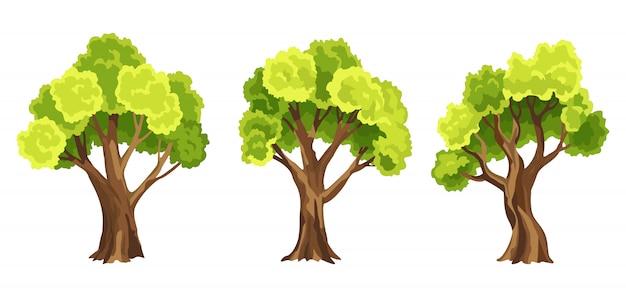 Árvores com folhagem verde. conjunto de árvores estilizadas abstratas. ilustração natural
