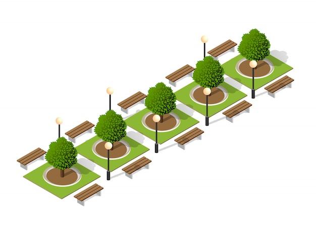 Árvores de um banco do parque
