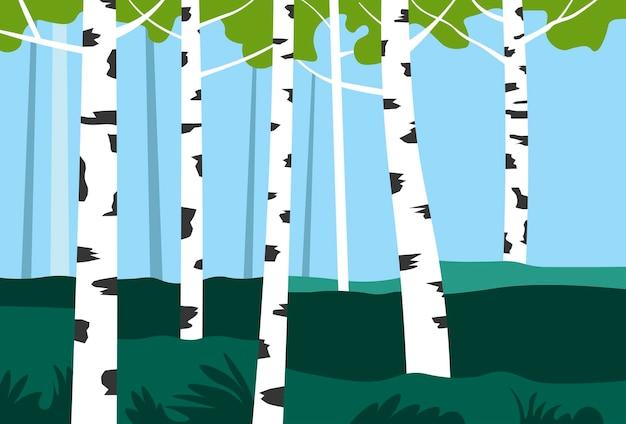 Árvores de vidoeiro na paisagem natural do parque ou vale
