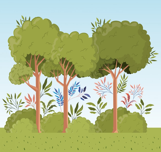 Árvores e folhas com cena de paisagem do mato