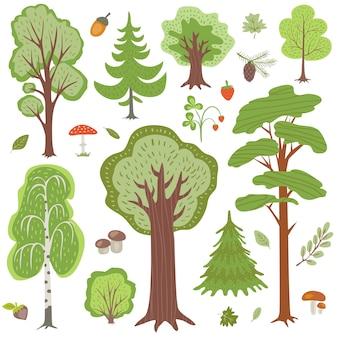 Árvores florestais, plantas e cogumelos, outros elementos florais da floresta