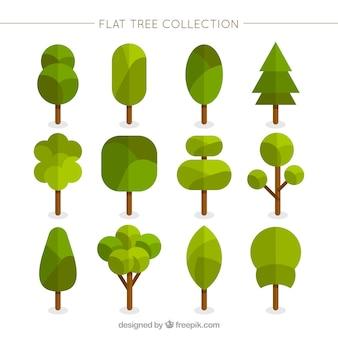 Árvores geométricas em estilo plano