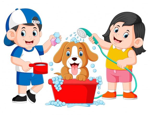 As crianças limpam o cão com o sabão e a água no balde
