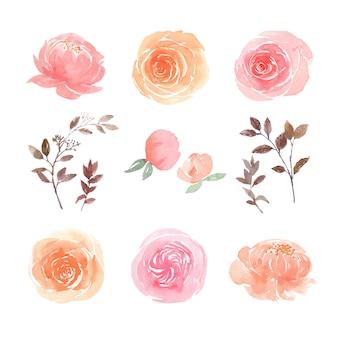 As folhas e o grupo de elementos floral da aquarela pintaram à mão flores luxúrias, ilustração da flor.