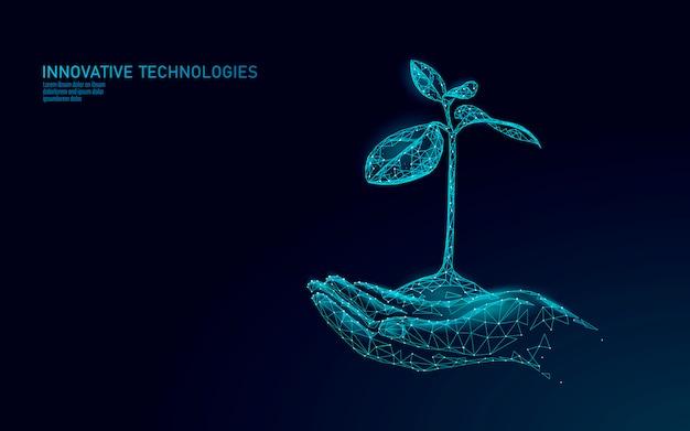 As mãos que guardam a planta brotam o conceito abstrato ecológico. 3d rendem as folhas da árvore de mudas. salvar o planeta natureza ambiente crescer vida eco polígono triângulos ilustração poli baixa