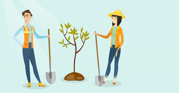 As mulheres brancas e asiáticas caucasianos plantam uma árvore.