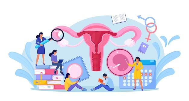 As pessoas estão estudando educação sexual. aula de biologia humana e anatomia. lição de saúde sexual para jovens. contracepção e sistema reprodutivo feminino. órgão interno do corpo. sexualidade e gênero