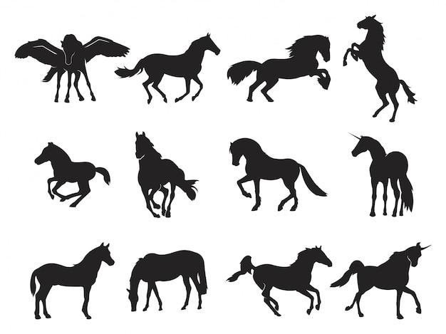 Asas corrida cavalo pegasus unicórnio corrida empinado silhueta