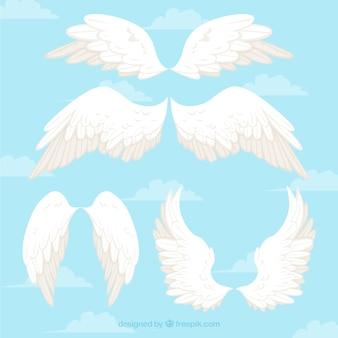 Asas de anjos brancos