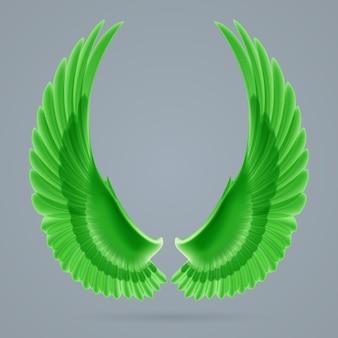Asas verdes inspiradoras desenhadas separadamente em um fundo cinza