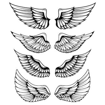Asas vintage em fundo branco. elementos para o logotipo, etiqueta, emblema, sinal, marca.