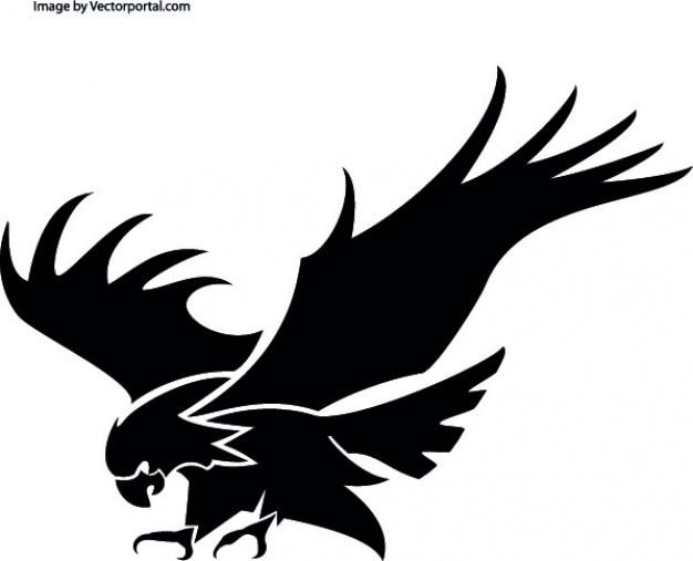 Atacando águia