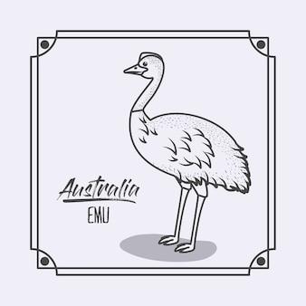 Austrália emu em quadro e silhueta monocromática