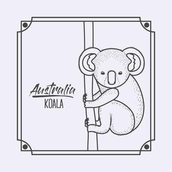 Austrália koala em moldura e silhueta monocromática