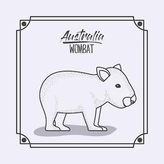 Austrália wombat em armação e silhueta monocromática