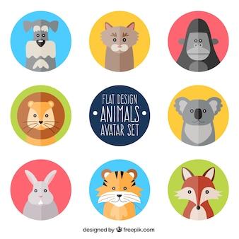 Avatares animais em design plano