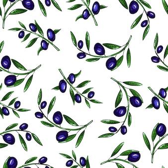 Azeitonas de padrão vetorial sem costura e ramo de oliveira com folhas no fundo branco