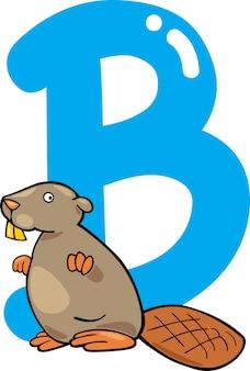 B para castor