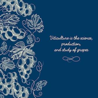 Baga botânica esboçar modelo azul com texto e cachos de uvas maduras em estilo vintage