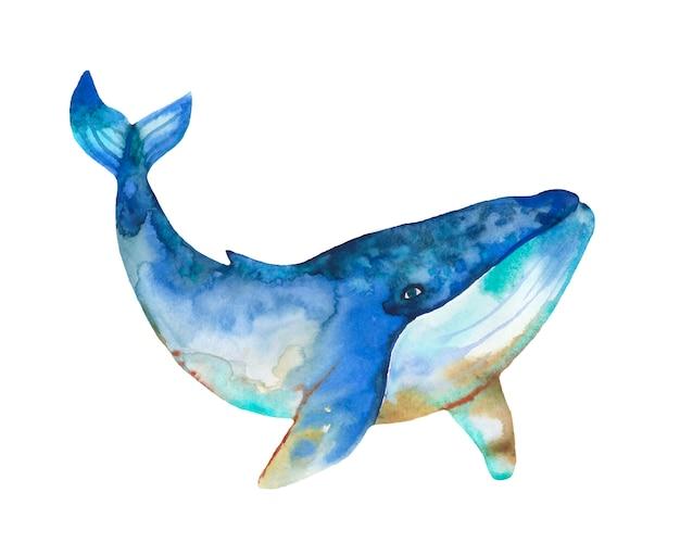 Baleia em aquarela com splash abstrato.