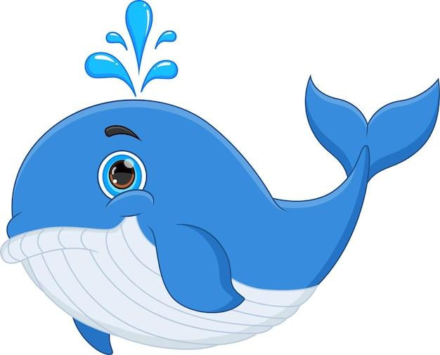 Baleia engraçada de desenho animado isolada no fundo branco