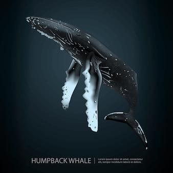 Baleia-jubarte sob a ilustração do mar