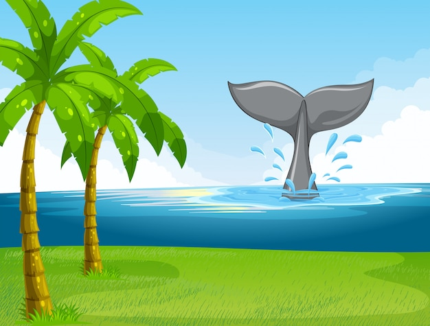 Baleia nadando no oceano