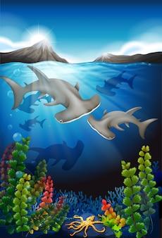 Baleia nadando sob o mar