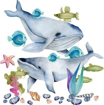 Baleias em aquarela entre a ilustração de peixes oceânicos