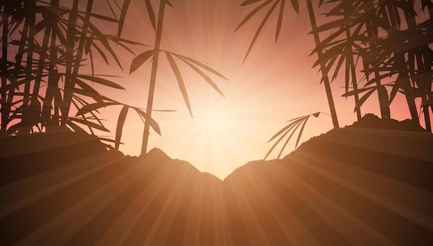 Bambu, contra, céu ocaso