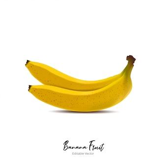 Banana fruit realistic