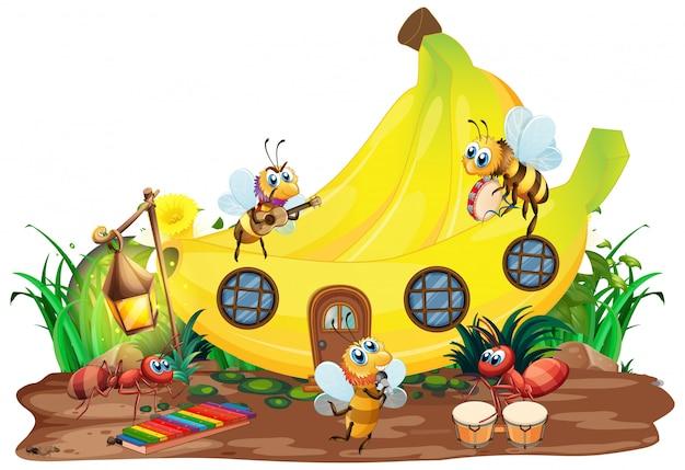 Banda musical de insetos tocando na frente da casa de banana
