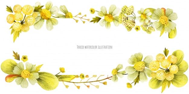 Bandeira de cabeça de plantas selvagens amarelas