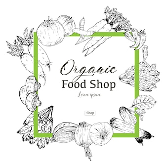 Bandeira de comida orgânica desenhada de mão. ervas e especiarias orgânicas. desenhos de comida saudável para venda. ilustração vetorial