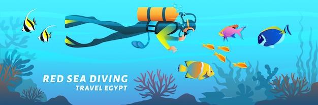 Bandeira de desenho animado de viagens egito. cartaz de mergulho do mar vermelho. mergulhador nadando debaixo d'água entre peixes de recife de coral, ilustração em estilo simples