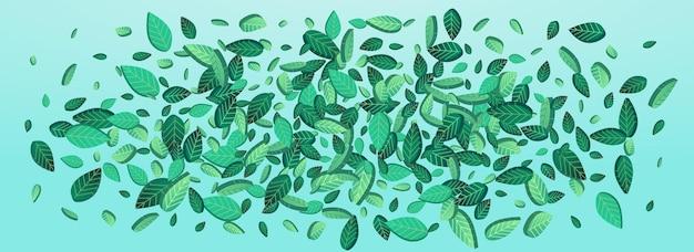 Bandeira de fundo azul panorâmico de vetor de movimento folhagem de cal. cartaz de folha de primavera. papel de parede orgânico grassy greens. folhas modelo de floresta.
