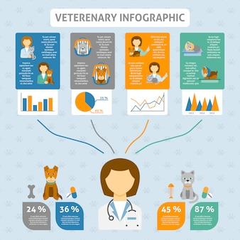 Bandeira de gráfico infográfico clínica veterinária
