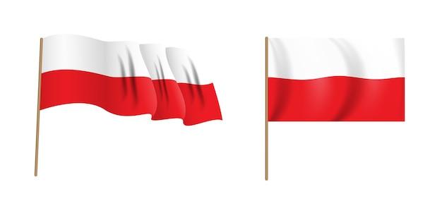 Bandeira de ondulação naturalista colorida da polônia. folhas