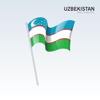 Bandeira do uzbequistão isolada em cinza