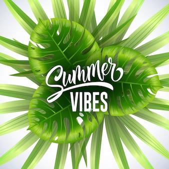 Bandeira sazonal das vibrações do verão com as folhas tropicais no fundo branco.