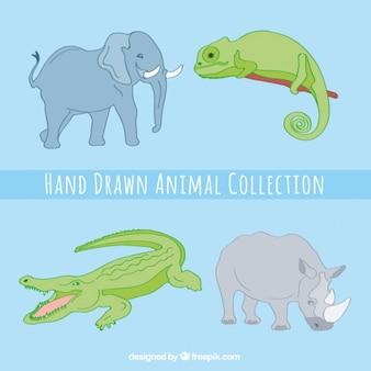 Bando de animais grandes desenhados à mão
