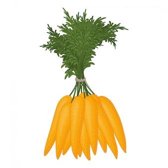 Bando de cenouras em um fundo branco. vegetais frescos. objeto isolado em um fundo branco. estilo dos desenhos animados.