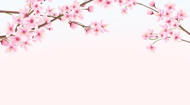 Banner com cereja florescendo na primavera. sakura japonesa
