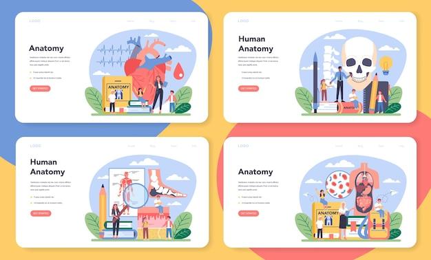 Banner da web de assunto escolar de anatomia ou conjunto de páginas de destino