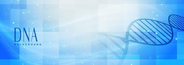 Banner de estrutura de dna de ciências médicas